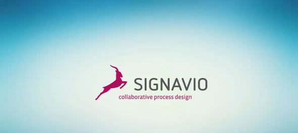 Werkinstructies in Signavio